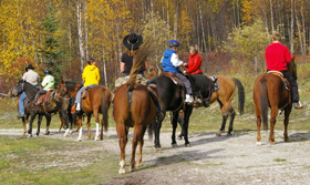 Horseback Riding at Bear Corner Bed and Bale
